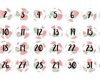 watermelon monthly number planner stickers - monthly date planner stickers - daily planner stickers - number stickers - countdown stickers
