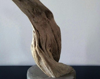 Driftwood decoration / Decoration Driftwood / Concrete / concrete