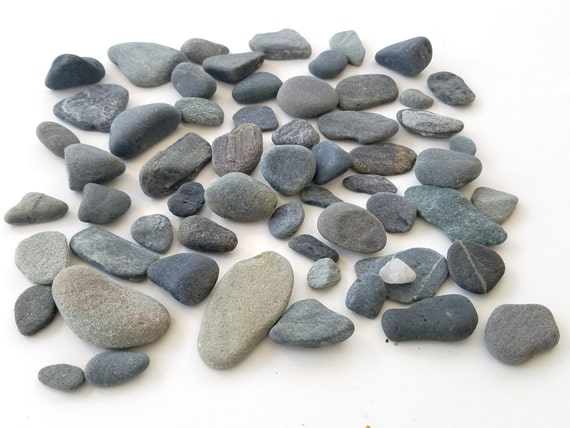 Small smooth rocks beach pebbles pebble art craft by for Flat stones for crafts