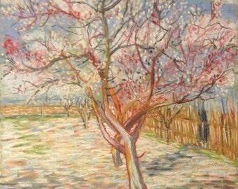 Van Gogh's Pink peach tree in blossom