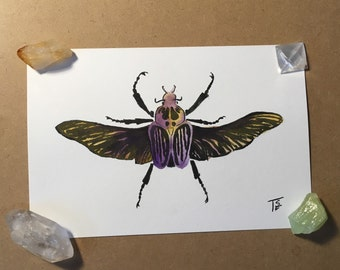 Ochre beetle  - original watercolor