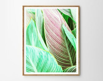 Tropical plant, Leaf, Pink, Abstract, Modern art, Wall decor, Digital art, Printable, Digital poster Instant Download 8x10, 11x14, 16x20