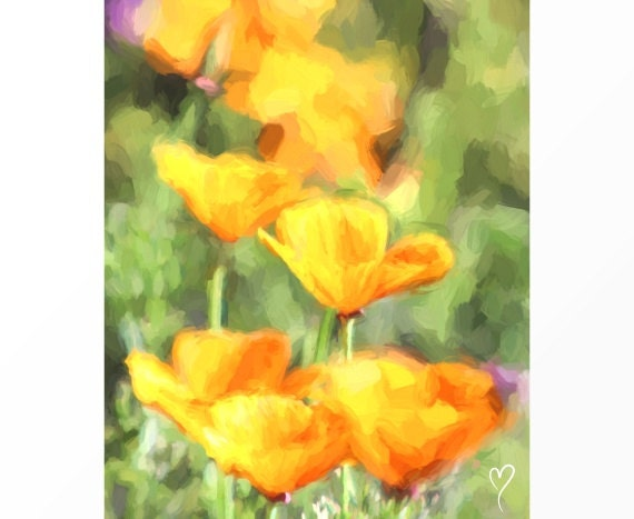 "Gold Picture of Poppy Flowers, GOLD ART PRINT, Gold Home Decor, Gold Flowers, Fine Art Print, Yellow Poppies ""Poppies Reaching for the Sun"""