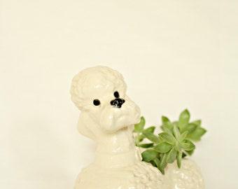 Poodle Succulent Planter
