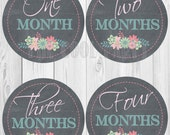 Baby Monthly Stickers ,baby stickers,baby month stickers,baby month stickers boy,baby month stickers girl,printable baby month stickers