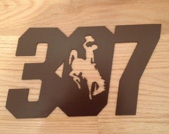 307 Wyoming Cowboys