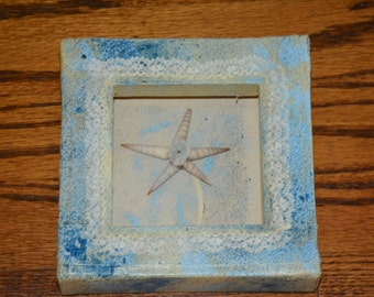 Handmade One of a Kind Shadowbox with Sea Shell Flower
