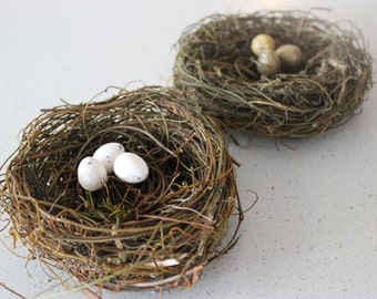 Bird Eggs - Made to order