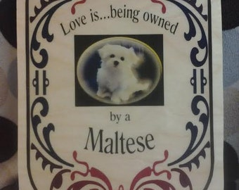 Wooden Plaque Maltese - Maltese Lovers- Maltese Home decor - Dog Lovers