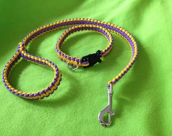 Medium collar leash set