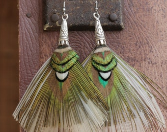 Peacock feather earrings. Natural feathers. Jewelry from nature. Boho/Gipsy spirit. Godess style.