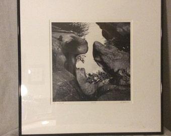 "Clearance sale-Ronald J Jacomini photo print "" Roaring Brooke"""