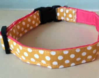Yellow & Pink Polka Dot Dog Collar
