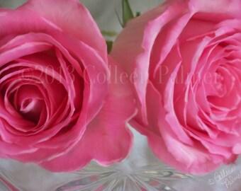 Pink Roses Floral Art Print