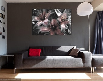 Flower Photography, black white pink