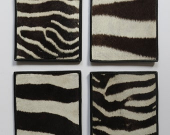 Zebra square coasters (set of 4)