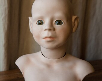 Curious Bisque head doll and body with glass eyes from germany