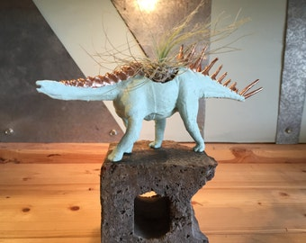 Mint dinosaur with gold trim and air plant set