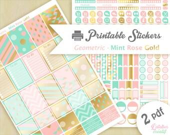 Color Mint Rose Gold | Printable stickers | 2 pdf | Téléchargement instantané | Planner, Happy planner