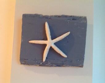 Starfish Wall Sign, Coastal,Nautical,Starfish,Shells,Sand,Beach,Cape Cod