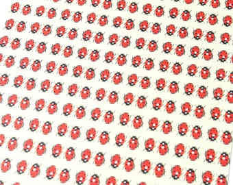 Ladybird. Digital Print.