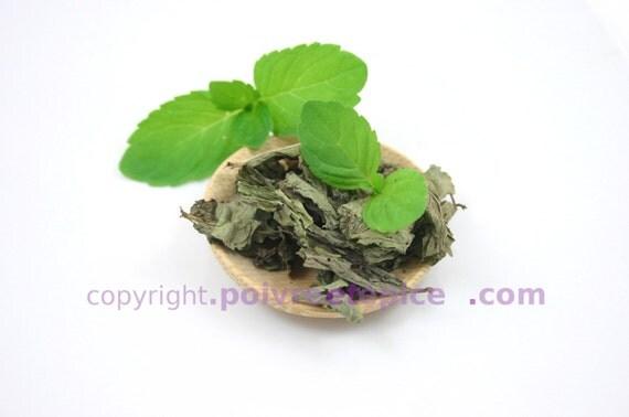 feuille de MENTHE - leaf MINT
