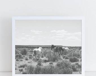 Black and White Prints, Horse Photography, Horse Print, Horse Picture, Large Wall Art, Desert Print, Desert Decor, Desert Landscape, Modern.