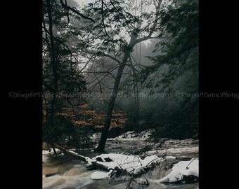 Landscape Photography, Spring Mist, Spring Print, Seasonal Photography, Fine Art Photography, Color Photography, Scenic Photography, Nature