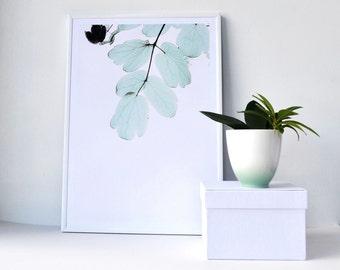 Botanical Print, Modern wall art, Botanical decor, House warming gift,  Nature prints, Nature Wall Art, Botanical Poster, Mixed Media,
