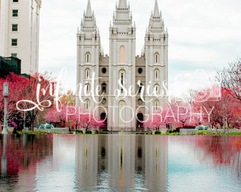 LDS Temple Canvas Wrap | Multiple Sizes and Temples Available | FREE SHIPPING - U.S.A.