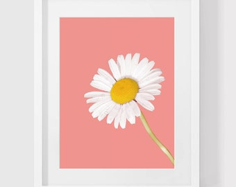 Pink Flower Print, Flower Art, Flower Photo, Flower Photography, Summer Art, Wall Art, Wall Print, Printable Art, Daisy, Flower