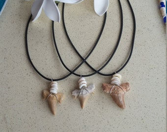 Sharks Tooth Necklace.Wire wrapped with pukashells and sterling silver lobster clasp.Choker style necklace.