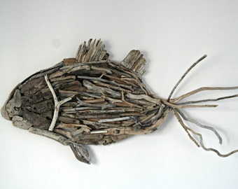 Mediterranean Driftwood Fish