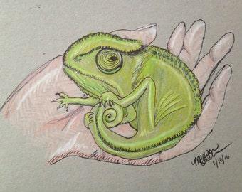 Kooky Chameleon