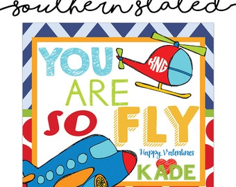 """You Are So """"Fly"""" Valentines"""