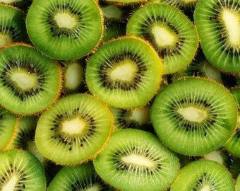 Kiwi cuttings!Plant your kiwis!!Delicious fruit! Very easy to plant!!