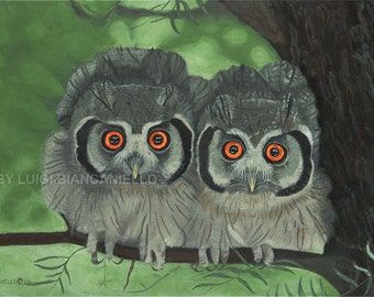 Wall art, Owl print ,Wildlife art,owls.