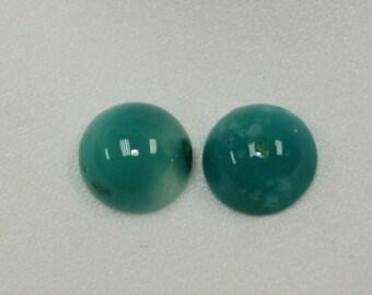 Chrysacolla (pair) 8mm