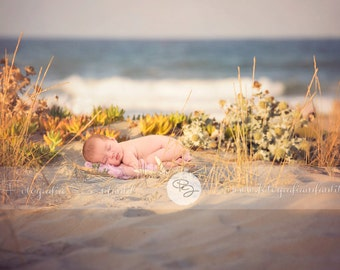 Newborn Digital Backdrop (beach/plate)