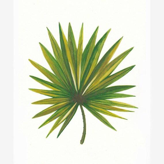 feuille de dessin dessin de feuille de palmier tropical