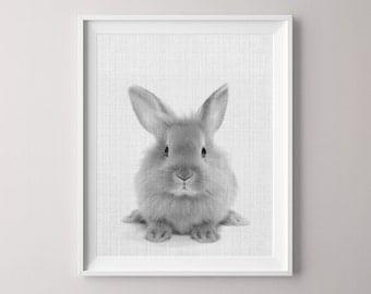 Animal Printable, Canvas Pictures, Rabbit, Canvas Print, Peekaboo Animals, Bunny Rabbit Art, Nursery Decor, Nursery Print, Nursery, Wall Art