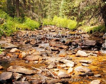 PRINT ENLARGEMENT- Mountain Stream