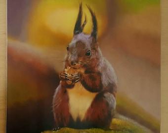 Red squirrel melamine coaster - tableware