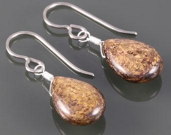 Bronzite Teardrop Earrings. Titanium Ear Wires. Genuine Gemstone.