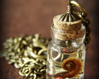 Tiny Tentacle Necklace SP1