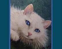 White Cat, Kitten, Blue Eyes, Art 5x7 Inch Giclee Print by Melody Lea Lamb