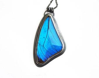 Real Blue Morpho Butterfly Wing Necklace. Sterling Silver Waterproof Butterfly Wing Pendant. Sterling Silver Blue Morpho Necklace.