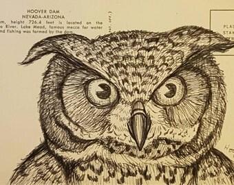 Horned Owl - Original drawing on vintage post card by Mr Hooper of Nashville Tennessee