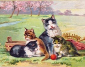 Vintage Cat and Kittens Postcard sent in Feb 1912 posted on Leap Year Day