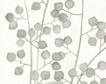 Plant Pattern Three // archival print